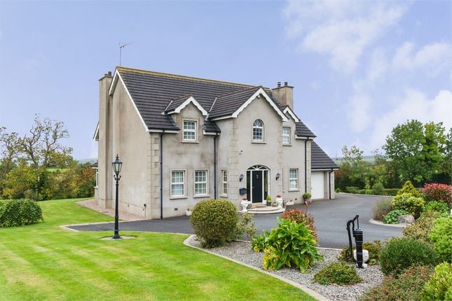 Thumbnail Detached house for sale in Old Mill Road, Scarva, Craigavon, County Down
