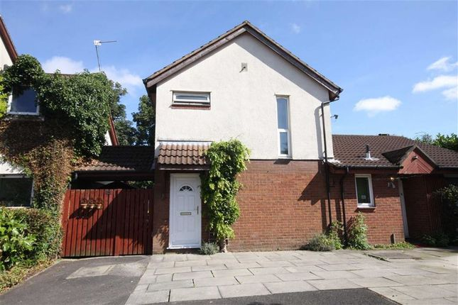 Thumbnail Semi-detached house to rent in Cinnamon Court, Preston
