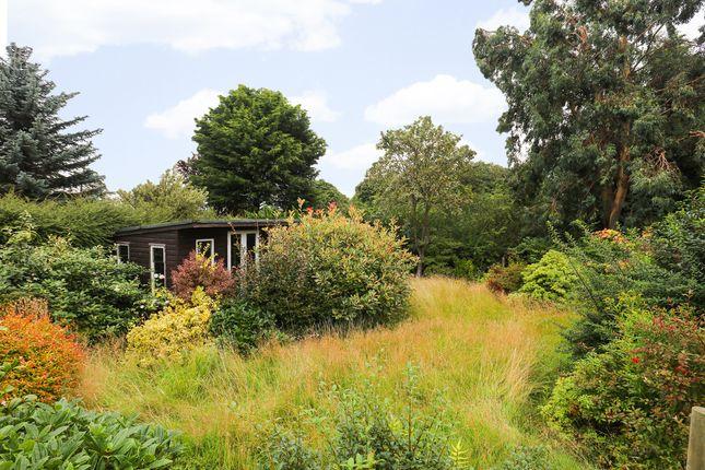 Garden of Hollow Lane, Halfway, Sheffield S20