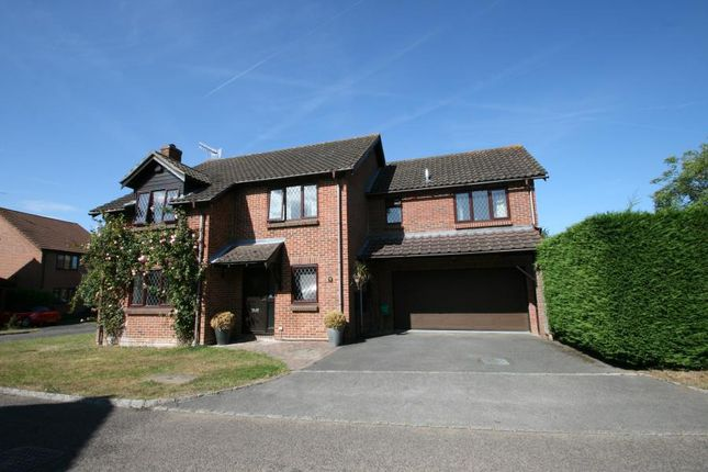 Thumbnail Detached house to rent in Selbourne Road, Burpham, Guildford