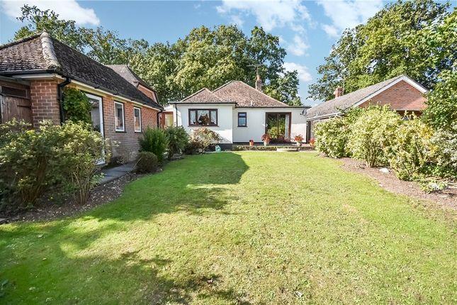 Thumbnail Detached house for sale in Rownhams Lane, North Baddesley, Southampton