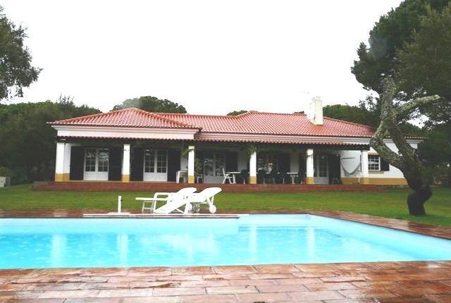 Herdade Do Zambujeiro, Santo Estêvão, Benavente, Santarém, Central Portugal