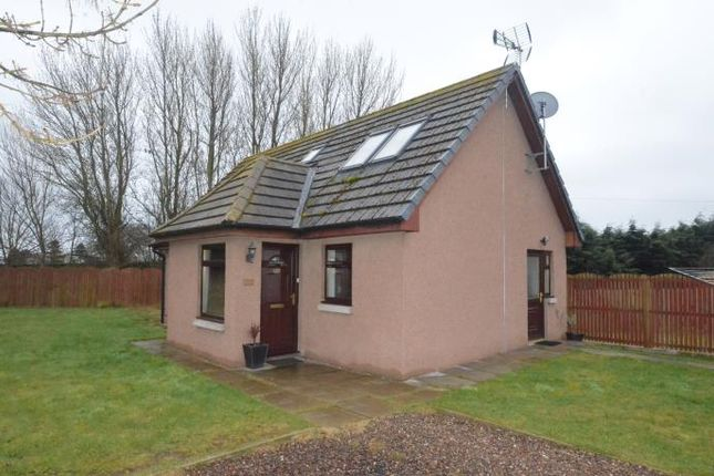 Thumbnail Detached house to rent in Gindera Road, Montrose