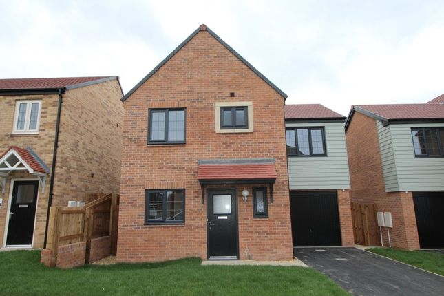 Thumbnail Detached house to rent in Dukesfield, Shiremoor, Newcastle Upon Tyne