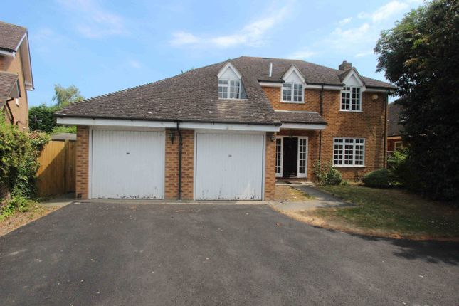 Thumbnail Property to rent in Hermitage Lane, Windsor