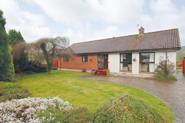 Thumbnail Detached bungalow for sale in Rose Street, Beauly