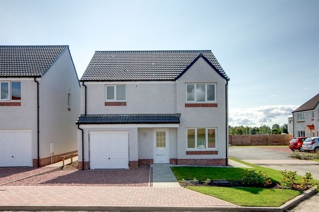 "Thumbnail Detached house for sale in ""The Balerno"" at Gilbertfield Road, Cambuslang, Glasgow"