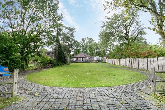 Thumbnail Detached bungalow for sale in Parrock Lane, Upper Hartfield, Hartfield