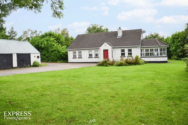 Thumbnail Detached bungalow for sale in Race Road, Portglenone, Ballymena, County Antrim