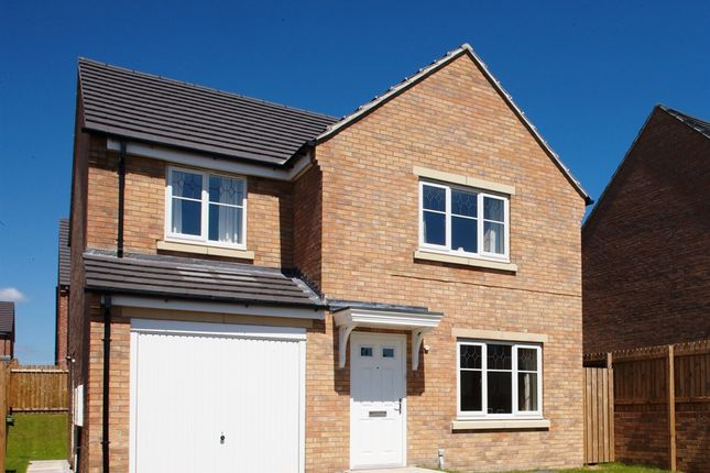 "Thumbnail Detached house for sale in ""The Roseberry"" at Church Hill Terrace, Church Hill, Sherburn In Elmet, Leeds"