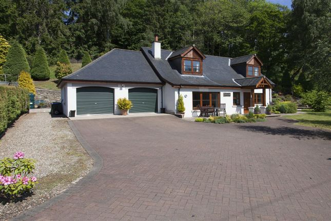 Thumbnail Detached house for sale in Tummel Lodge, Ballyoukan, Pitlochry