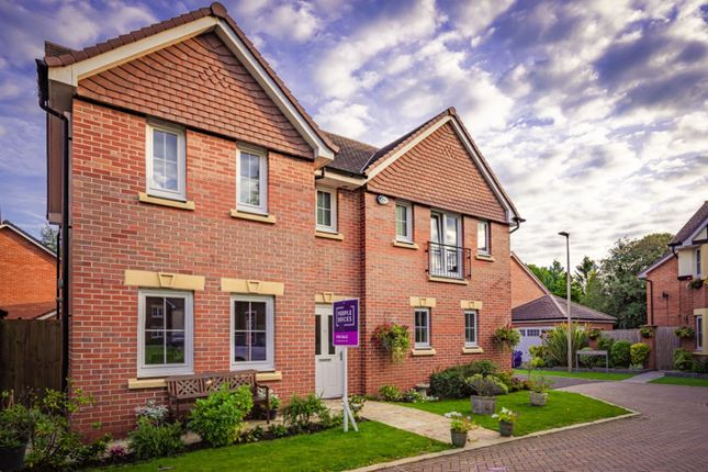 Thumbnail Detached house for sale in Sandland Grove, Nantwich