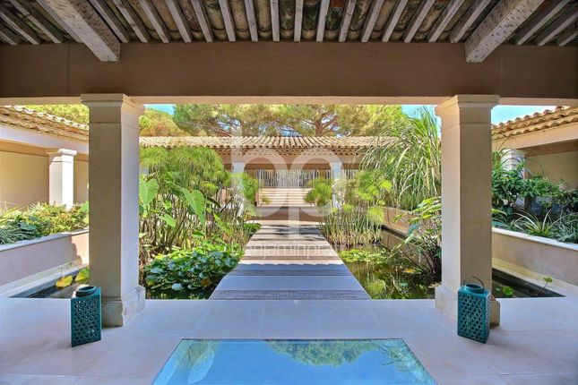 Thumbnail Property for sale in Saint-Tropez, 83350, France