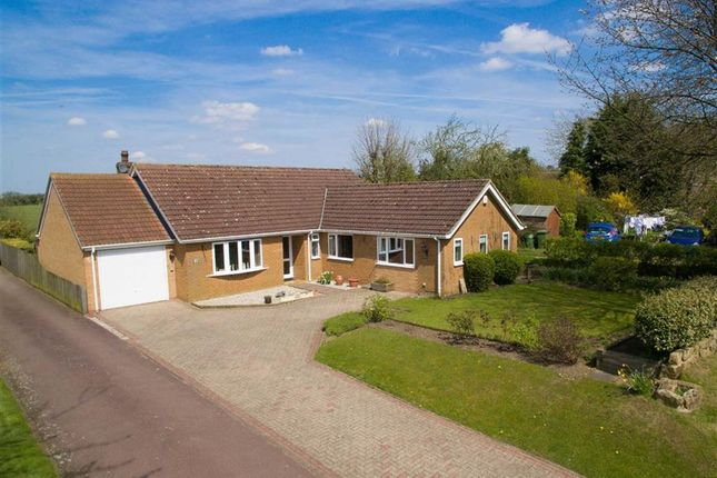Thumbnail Bungalow for sale in North Street, Caistor