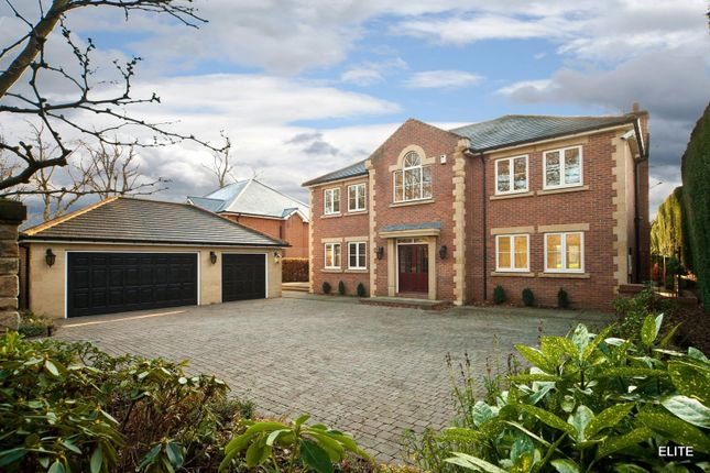 Thumbnail Detached house to rent in Potters Bank, Durham