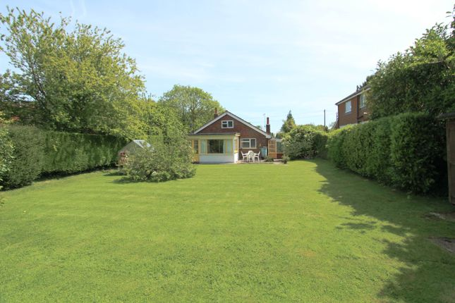 Thumbnail Detached bungalow for sale in Ramsdean Road, Petersfield