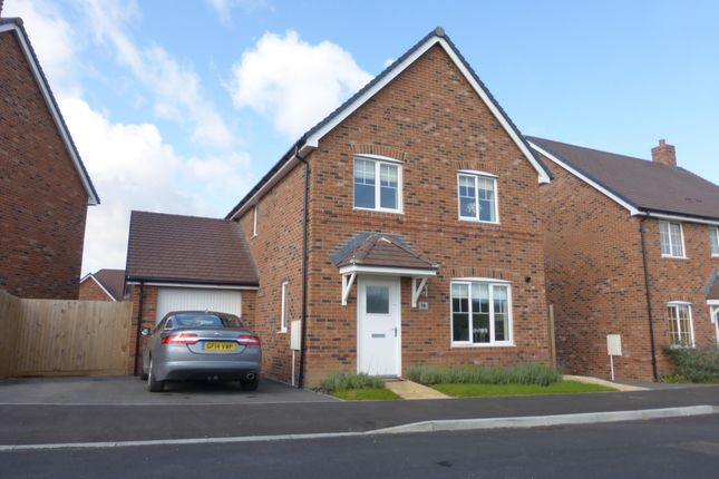 Thumbnail Detached house to rent in Tapestry Road, Andover