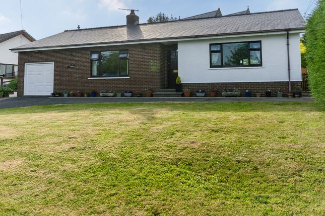 Thumbnail Bungalow for sale in Hillfield, Ferwig, Cardigan