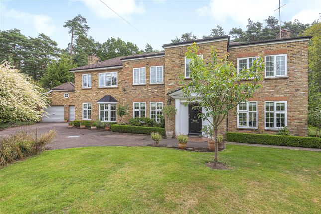 Detached house to rent in Fir Tree Close, Ascot, Berkshire