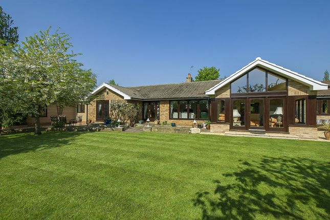 Thumbnail Detached bungalow for sale in Loughborough Road, Ruddington, Nottingham
