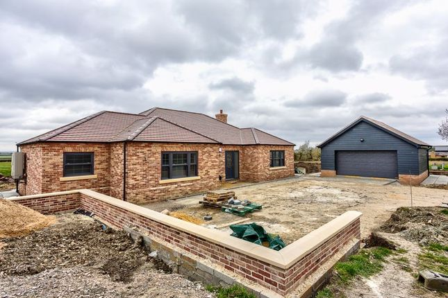 Thumbnail Detached bungalow for sale in Hillrow, Haddenham, Ely