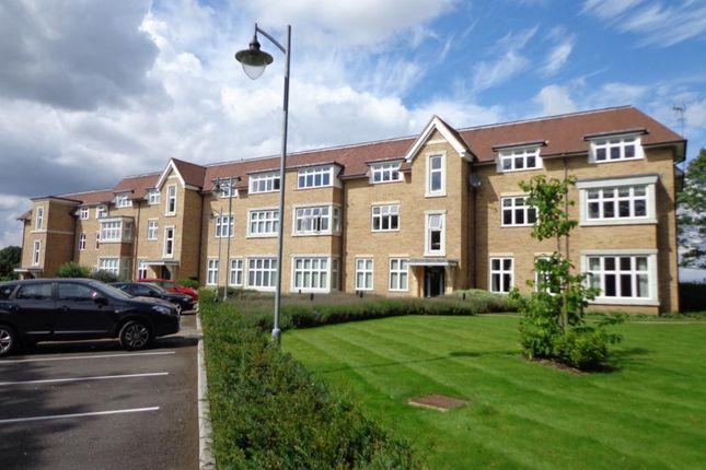 Thumbnail Flat to rent in Cheveley Road, Newmarket