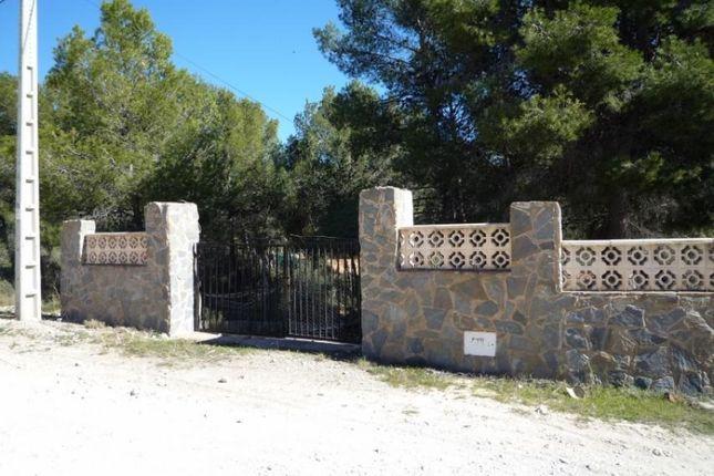 Land for sale in Tibi, Alicante, Spain