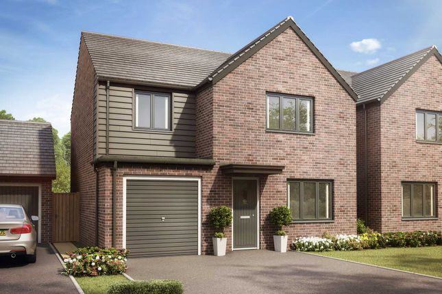 """Thumbnail Detached house for sale in """"The Roseberry"""" at Llantrisant Road, Capel Llanilltern, Cardiff"""