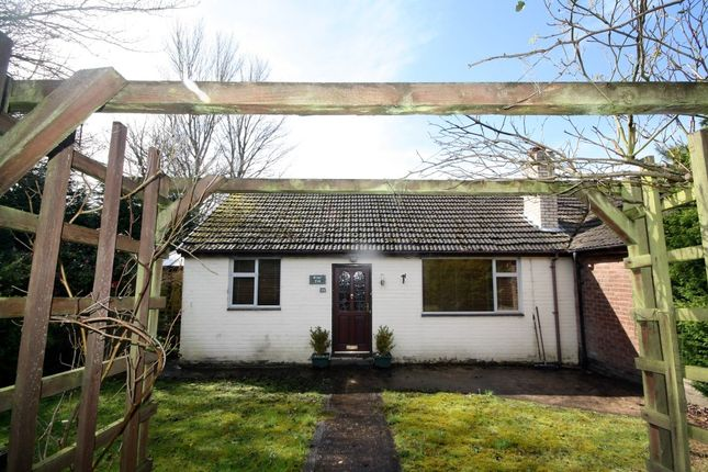 Thumbnail Bungalow to rent in Aintree Road, Bolton