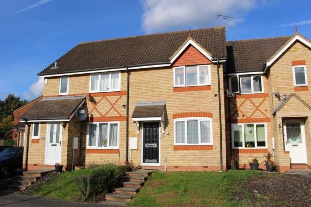Thumbnail Terraced house to rent in Deep Spinney, Biddenham