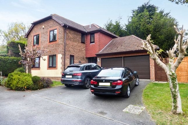 Thumbnail Detached house for sale in Fairfield Chase, Bexhill-On-Sea