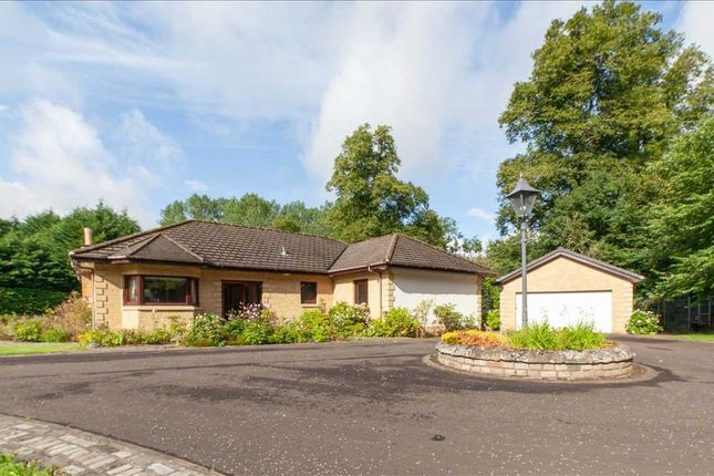 Thumbnail Bungalow for sale in Glen Road, Wishaw