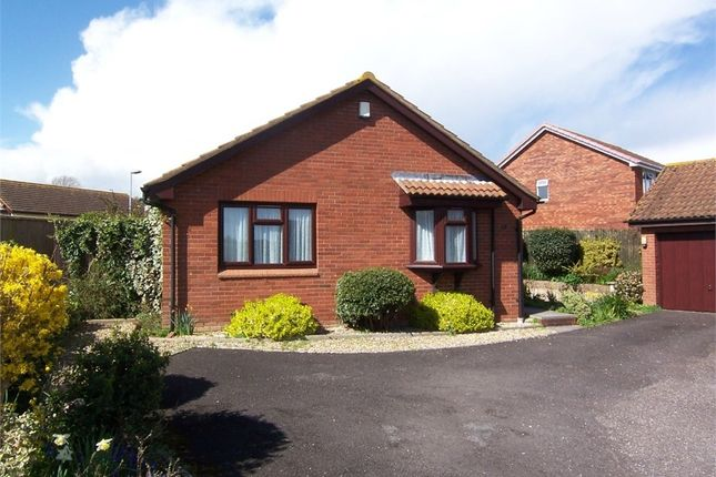 Thumbnail Detached bungalow for sale in Woodfields, Seaton