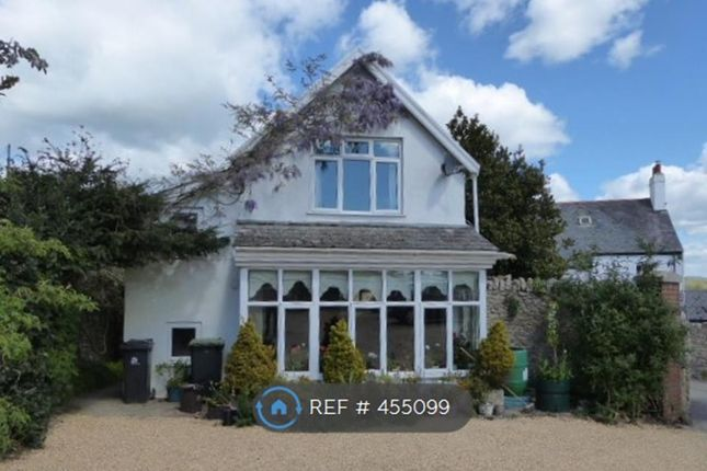 Thumbnail Semi-detached house to rent in The Street, Charmouth, Bridport