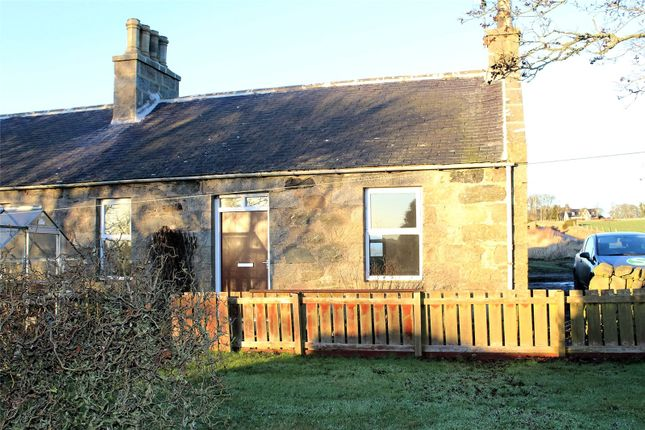 Thumbnail Semi-detached bungalow to rent in Hillhead Of Fechil Cottages, Ellon