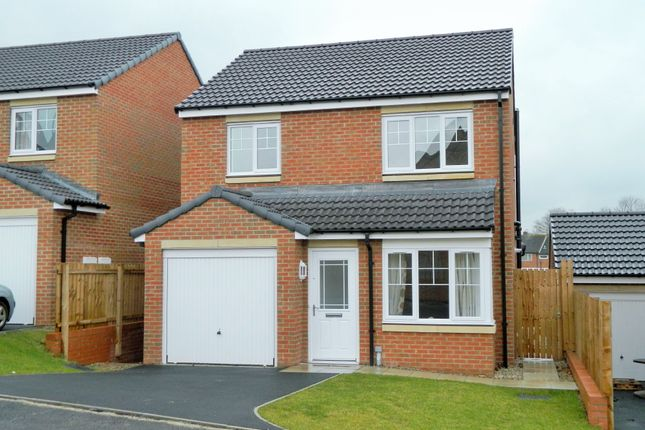 Thumbnail Detached house for sale in Foundry Way, Guisborough