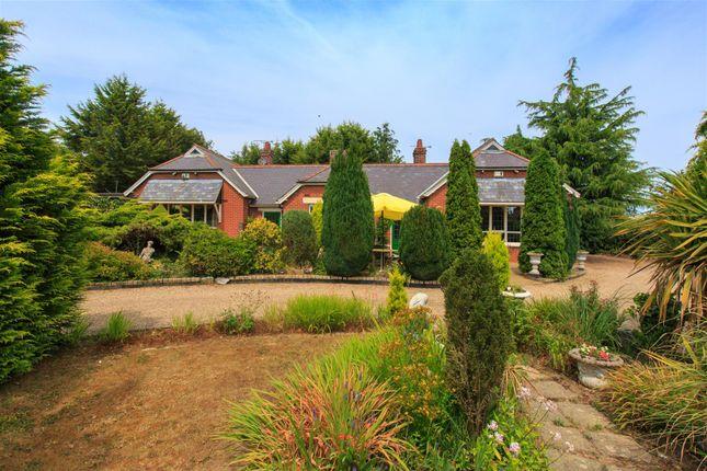 Thumbnail Detached house for sale in Halvergate, Norwich
