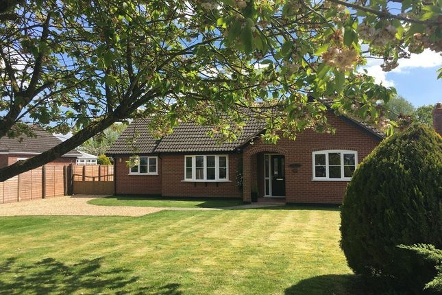 Thumbnail Detached bungalow for sale in Common Road, Bressingham, Diss, Norfolk
