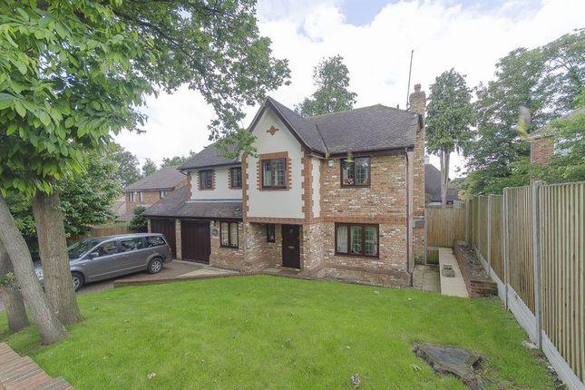 Thumbnail Property to rent in Cranmer Close, Weybridge