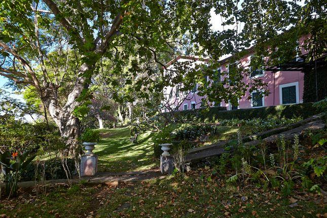 Thumbnail Villa for sale in Santa Luzia, Funchal, Madeira Islands, Portugal