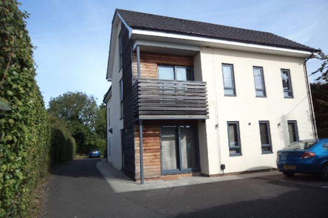 Thumbnail Property to rent in Greenway Lane, Fakenham