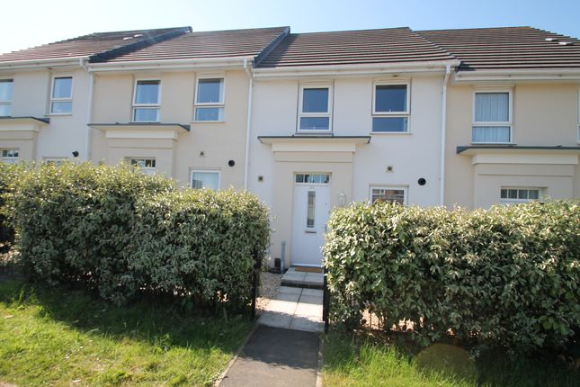 Thumbnail Terraced house for sale in Efford Road, Plymouth