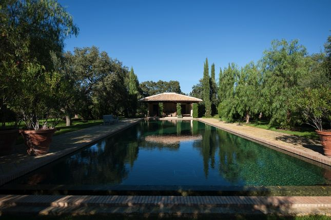 Thumbnail Equestrian property for sale in Castillblanco De Los Arroyos, Sevilla, Spain