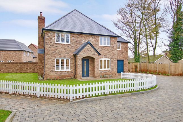 Thumbnail Detached house for sale in Amiens Close, Hunsdon, Hertfordshire