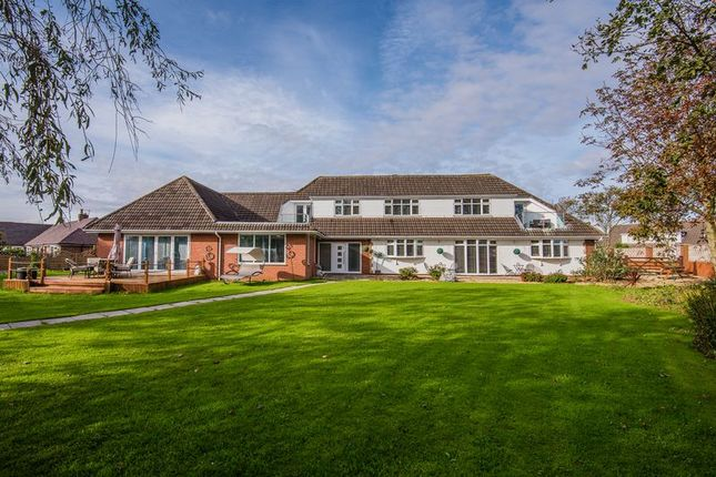 Thumbnail Detached house for sale in Preston New Road, Southport