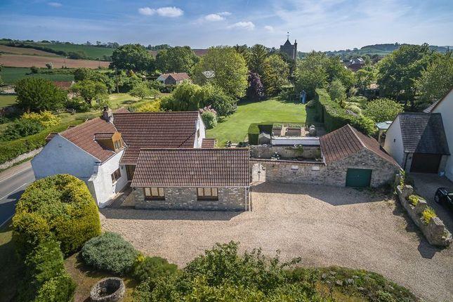 Thumbnail Detached house for sale in Greinton, Bridgwater