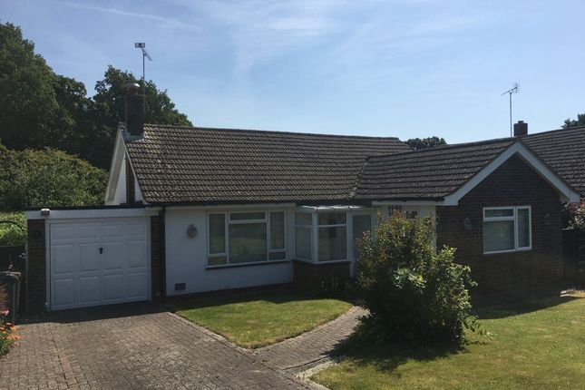 Thumbnail Bungalow to rent in Knockwood Road, Tenterden, Kent