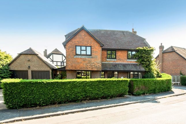 Thumbnail Property to rent in Court Meadow, Rotherfield, Crowborough