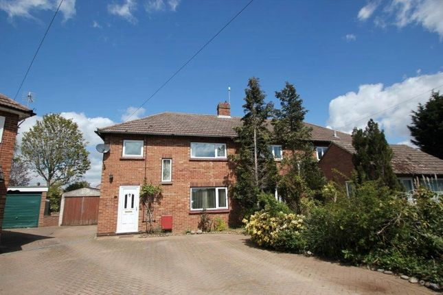 Thumbnail Semi-detached house to rent in Parr Drive, Colchester