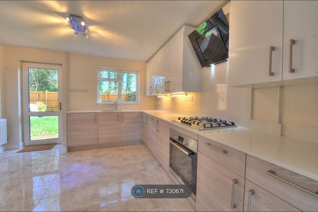 Thumbnail 4 bed detached house to rent in The Spinney, Milton Keynes